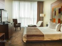 Landmark Hotel Baku - Executive Studio with Executive Club Access