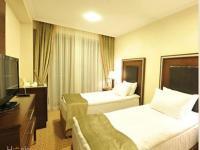 Чинар Отель и Спа Нафталан - Стандартный двухместный номер с 2 отдельными кроватями
