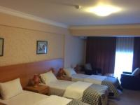 Jasmine Hotel Baku - Standard Twin Room